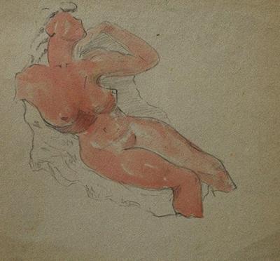 nudo-preview