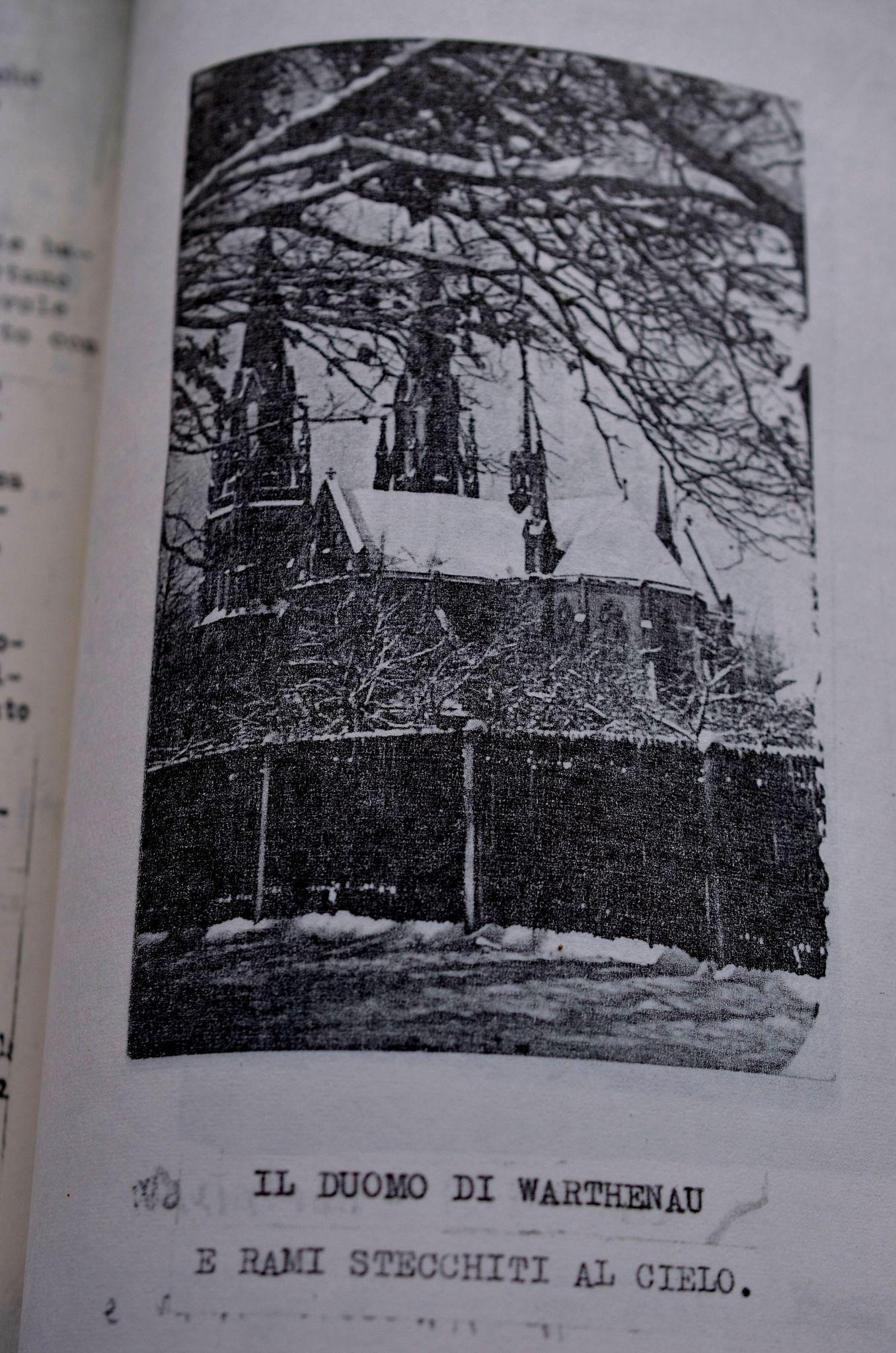Cattedrale di Warthenau